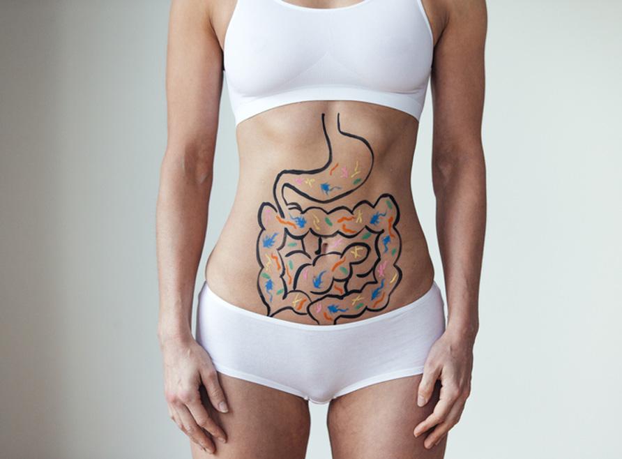 ¿Por qué consumir probióticos?