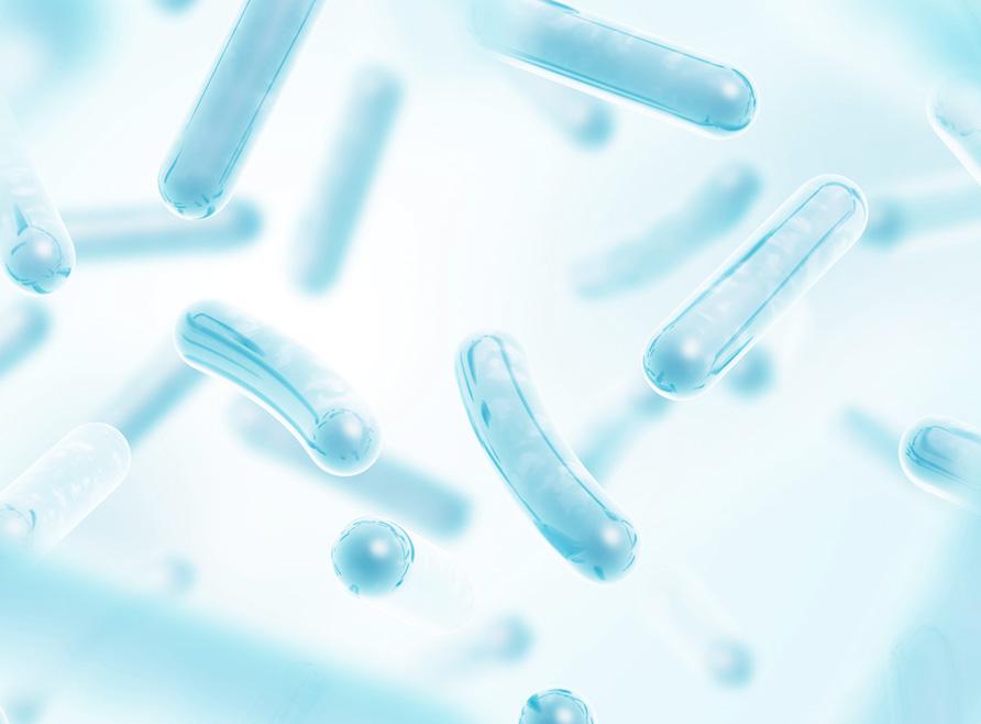 Probióticos, benefícios digestivos para a saúde